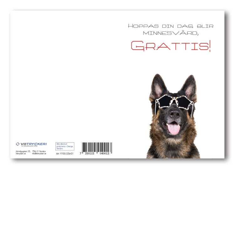 Grattiskort - Cool Dog