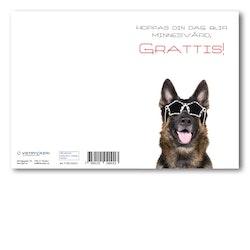 Grattiskort - Cool Dog