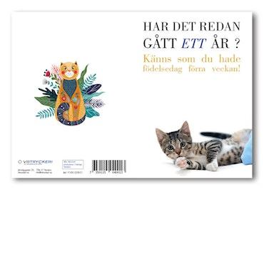 Grattiskort - Cat