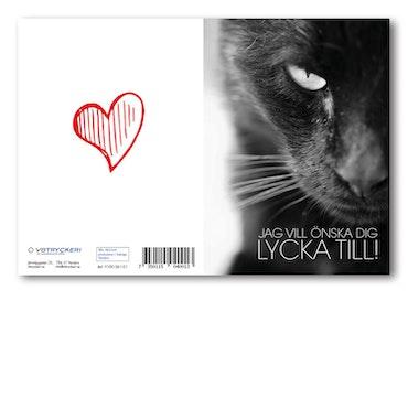 Grattiskort - Black Cat