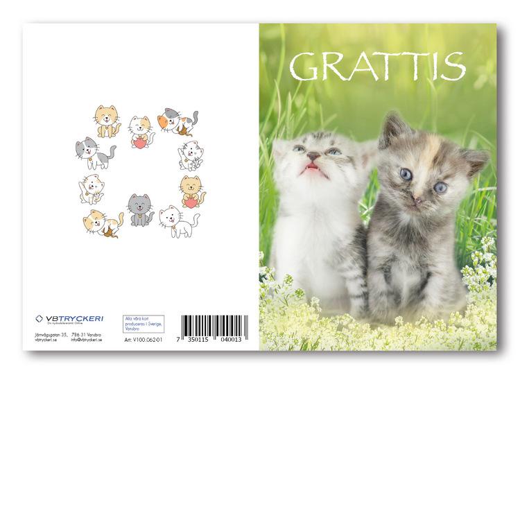 Grattiskort - Summer Cat