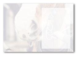 Grattiskort - Skålö utan text