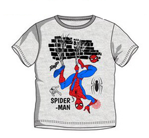 Spiderman / Spindelmannen T-shirt