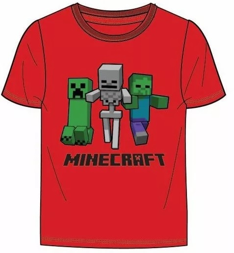 Minecraft T-shirt - On the way