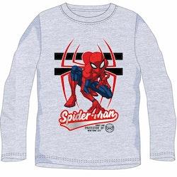 Spindelmannen Tröja - Protector of NY Grey