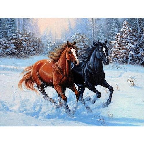 Horse , 40 x 50 cm