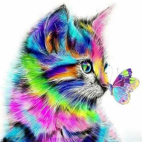 Färgglad katt med fjäril