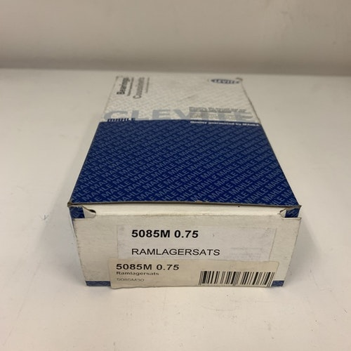 Ramlagersats 5085M 030 1985/05 262 V6