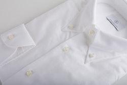 Pinpoint Oxford Shirt - Button Down - White