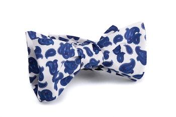 Self tie Paisley Cotton - Navy Blue/White