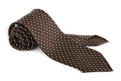Polka Dot Printed Silk Tie - Untipped - Brown/White