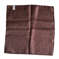 Border/Pin Dot Silk Pocket Square - Brown/White