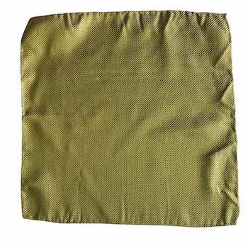 Solid Garza Silk Pocket Square - Light Green