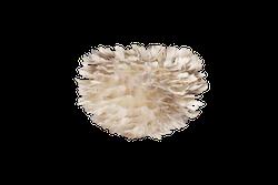 UMAGE - FjäderLampa - Eos micro, ljusbrun