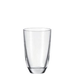 LEONARDO Dricksglas 430ml Salute