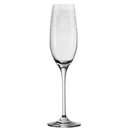 LEONARDO Champagneglas 200ml Chateau