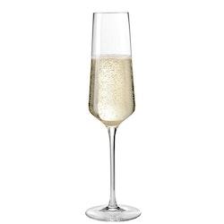 LEONARDO Champagneglas 280ml Puccini