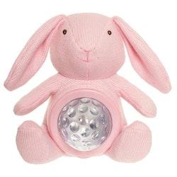 Teddy lights, Nattlampa, Kanin