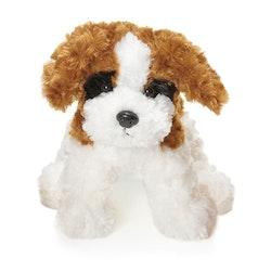 Teddy Dogs, vit