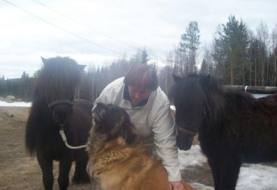 Häst och hund