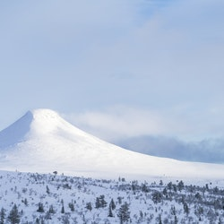 Vinterdag Städjan