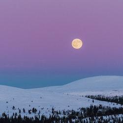 Fullmåne på fjället