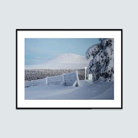 Snötyngda träd och Städjan