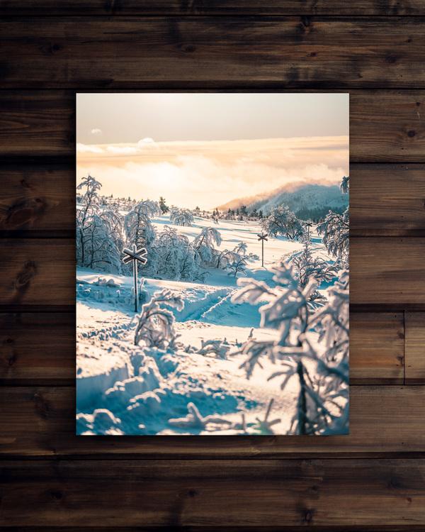 Canvas Vinter på Nipfjället
