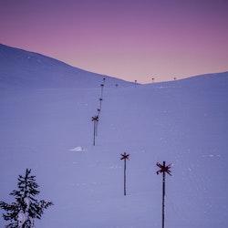 Ledkryss polarljus 4