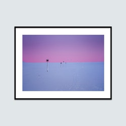 Ledkryss polarljus 1