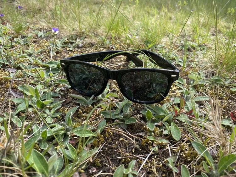 Solglasögon Laudio