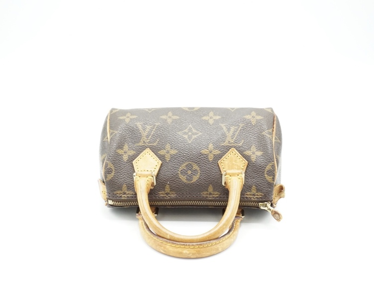 Louis Vuitton Speedy Nano