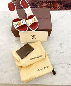 Louis Vuitton Multicolor Mules strl.36