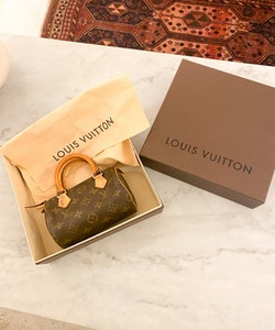 LOUIS VUITTON Speedy Mini HL