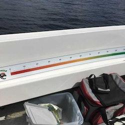 Mätdekal till båten