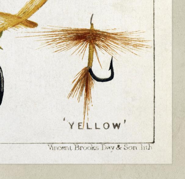 Vincent Brooks Day & Son – fiskedrag – 1870