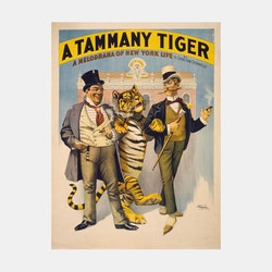 Poster – A Tammany Tiger – 1896