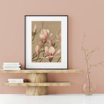 Bild – Magnolia – 1886