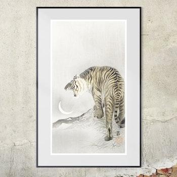 Poster – Japanskt, Roaring Tiger – 1900-tal