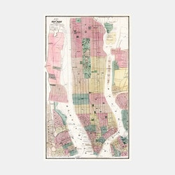 Karta – New York and Vicinity – 1869