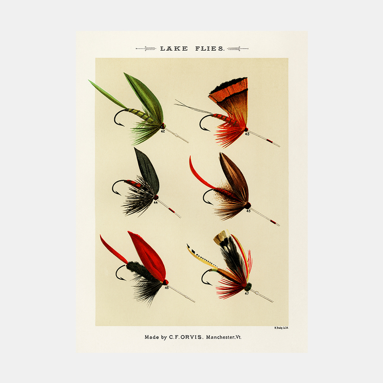 Lake Flies – fiskedrag – 1870
