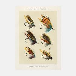 Salmon Flies – fiskedrag – 1870