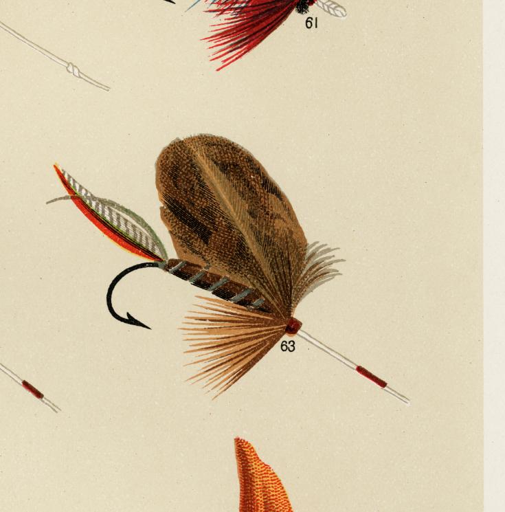 Lake Flies – fiskedrag – 1870