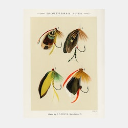 Trout & Bass Flies – fiskedrag – 1870