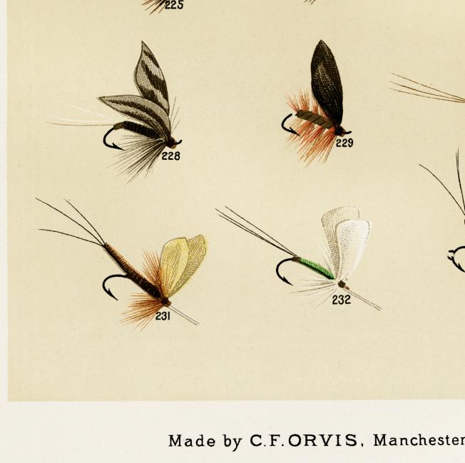 Trout Flies – fiskedrag – 1870