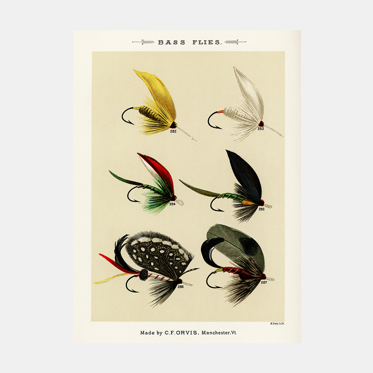 Bass Flies – fiskedrag – 1870