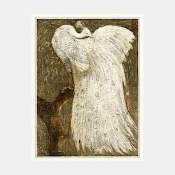 Witte pauw op tak – Theo van Hoytema – 1910