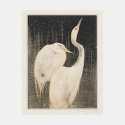 Twee zilverreigers – Theo van Hoytema – 1905