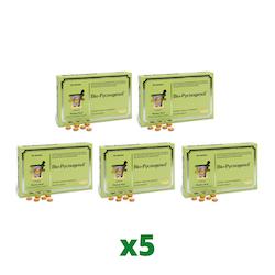 5 x Bio-Pycnogenol, 90 tabletter