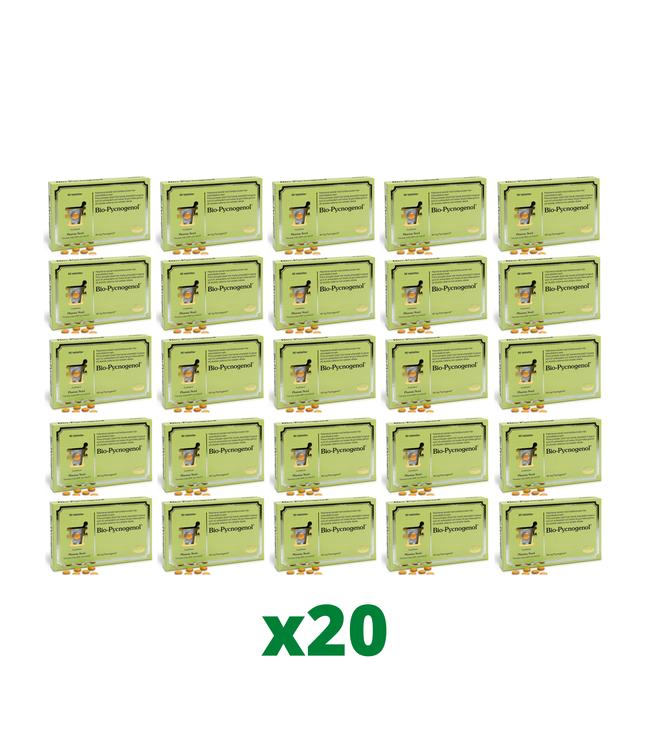 20 x Bio-Pycnogenol, 90 tabletter